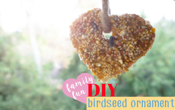 DIY Birdseed Ornaments for the HANGRY BIRDS