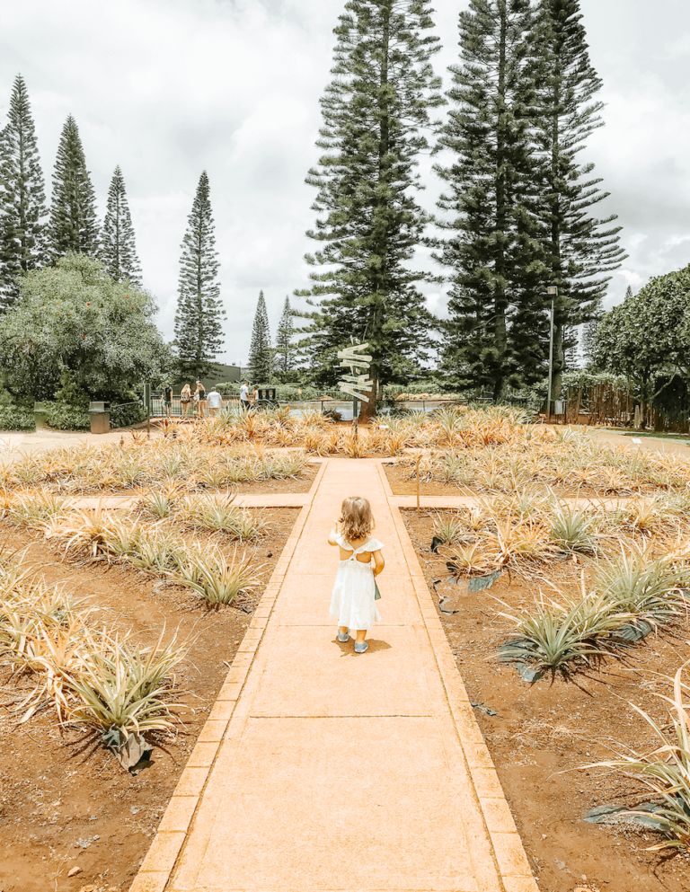 Dole Pineapple Plantation - Best Things to do in Hawaii Oahu Waikiki - Kid Toddler Friendly - tiffanieanne.com