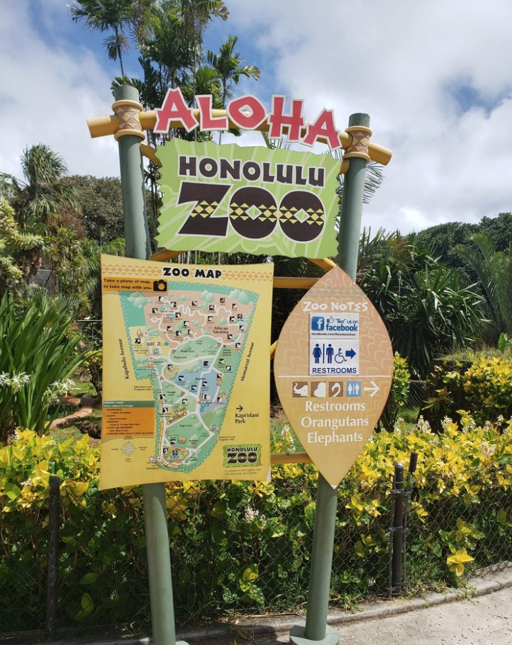 Honolulu Zoo Best Things to do in Hawaii Oahu Waikiki - Kid Toddler Friendly - tiffanieanne.com