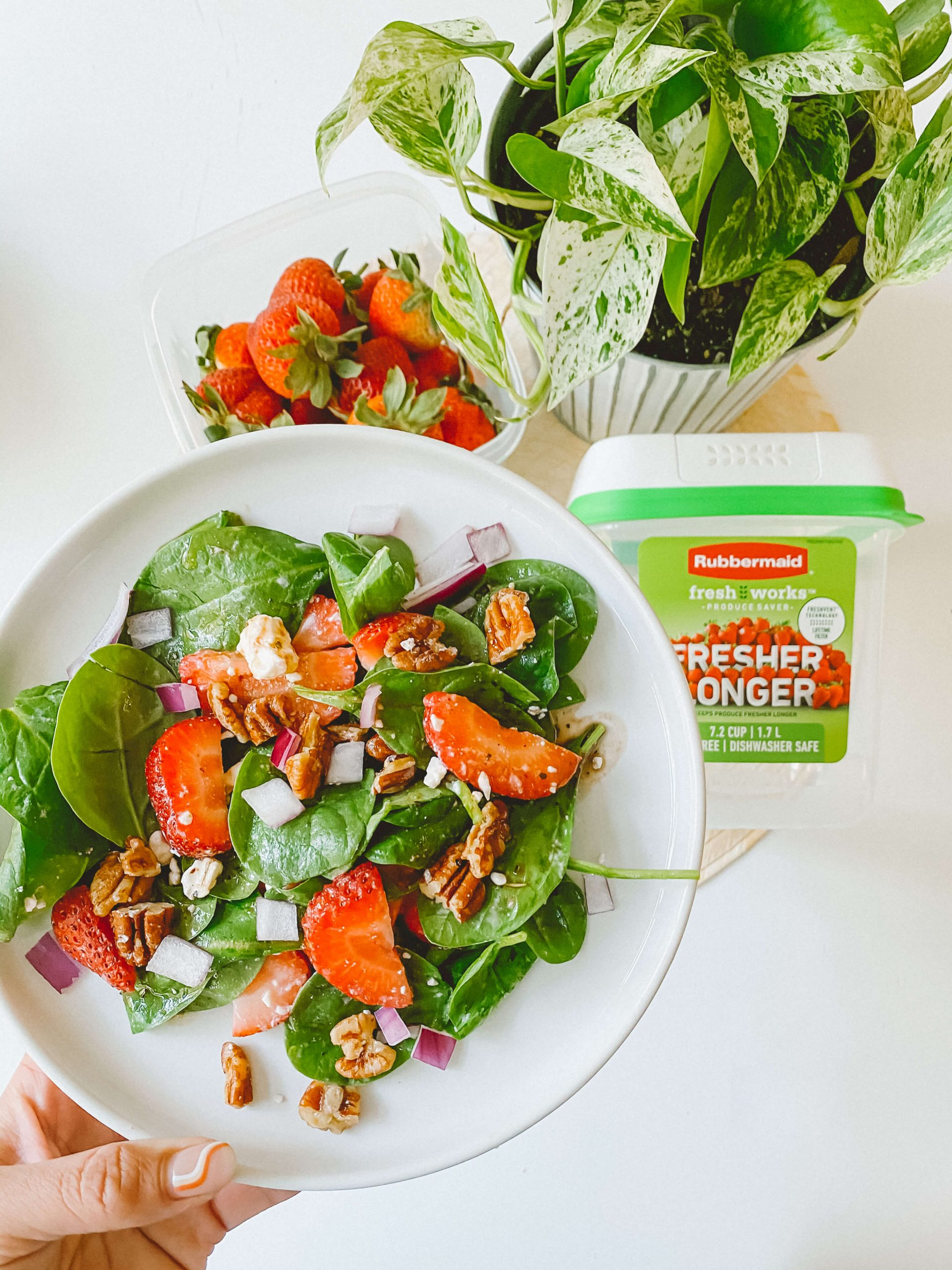 Strawberry-Spinach-Summer-Salad-FreshWorks-Produce-Saver-Rubbermaid-Green-Sustainable-Products